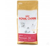 Royal Canin Persian ▪ Персидская кошка